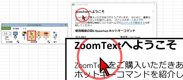 zoomtext画面見本